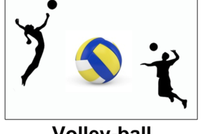 SECTION VOLLEY_BALL